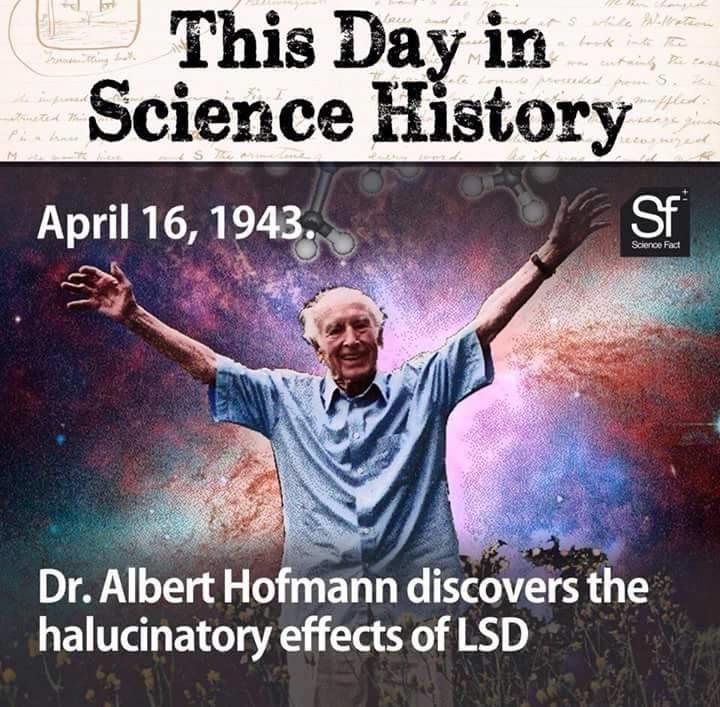 Albert Hofmann Quotes